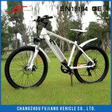 La Mejor Bicicleta Eléctrica de la Ciudad de la Venta Caliente