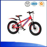 Grande bicicleta dos miúdos dos modelos por 6 anos de criança idosa