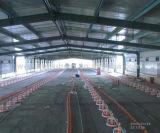 La struttura d'acciaio chiara si è liberata di/tettoia dell'azienda avicola di disegno struttura d'acciaio