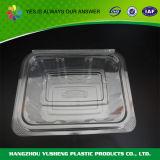 Малой ясной прикрепленный на петлях пластмассой контейнер еды для сандвича