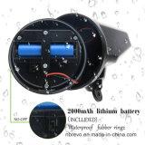 Indicatore luminoso solare classico della parete del sensore di movimento (RS2025)
