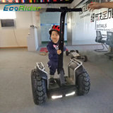 Uno mismo elegante del balance de dos ruedas de Ecorider que balancea el carro eléctrico de la vespa