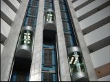 Elevador da HOME do elevador do passageiro com Sightseeing de vidro da boa qualidade