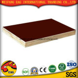 A madeira compensada Shuttering/madeira compensada marinha/madeira compensada impermeável/película concreta do molde enfrentaram a madeira compensada para a construção