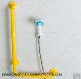 Staaf van de Greep van de Handicap van de Toebehoren van de badkamers de Plastic Nylon