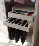 Praag Elegant Modern Style Slaapkamer Garderobe Met Pvc Deur (CA01-02)