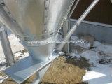 Silo d'acciaio galvanizzato della Camera del pollame