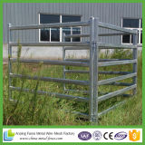 Comitati ovali del bestiame di Glavanized del mercato dell'Australia da vendere