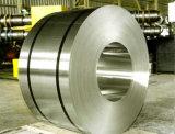 304 201 316L laminaron la bobina/la tira del acero inoxidable