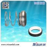 Mechanical Seal Ts166t, Pump Seal, CAP-Seal 21, Custom Seal