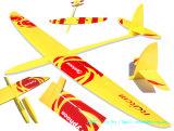 El tifón-2m Rcrcm Sloper ala RC de vuelo libre