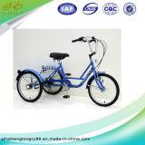 20 '' Rad-Fahrrad der preiswerter Preis-einzelnes Geschwindigkeits-drei/Fahrrad Sh-T006