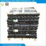 Гальванизированные плетение/сетка мелкоячеистой сетки