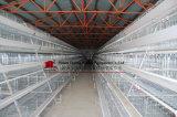 Equipo de las aves de corral del gallinero de la jaula del pollo del equipo de las aves de corral del gallinero de la jaula del pollo