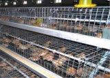 Цыпленок окунутая после того как курочка арретирует оборудование курятников автоматическое горячее/холод он гальванизирован (тип рамка)