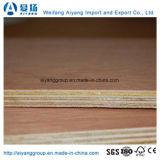 Núcleo de madera o contrachapado de Okume Bintangor comercial con el CARB/Certificación CE