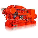 Biogas Generator Set (30kVA~1500kVA)