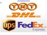 Консолидация Express/курьерской службой /от двери до двери доставка в США