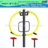 Machine arrière d'exercice de gymnastique de rouleau-masseur (HD-12203)