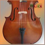 Festes Holz-Eingangsstufe-Cello
