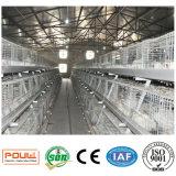 가득 차있는 자동적인 장비 시스템 (유형)를 가진 Poul 기술 보일러 닭 감금소