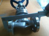 Válvula Globo Dn80 em aço inoxidável 316 para vapor
