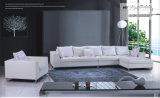 Neues Wohnzimmer-Sofa (FK803)