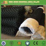 Rolls에 있는 녹색 PVC 입히는 체인 연결 담