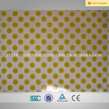 En12150, Bsi, SGCC, Csi Certificated, 3에서 Customized Pattern Tempered Ceramic Glass에 19mm