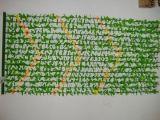 Flor de plástico de la puerta de bambú de las cortinas (HB-20220)