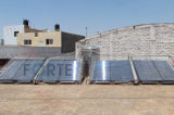 Calentador de agua solar de baja presión del tubo del vacío del proyecto