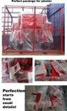 販売のための二重列の種取り機のニンニクのポテトプランター