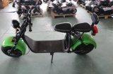 Motorino elettrico caldo di 60V 1500W Harley