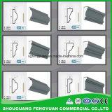 Profili decorativi dei modanature della gomma piuma ENV per il portello