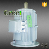 Gerador de ímã permanente do Ce/alternador com ponto baixo - velocidade, eficiência elevada