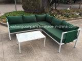 Sofà della mobilia dell'acciaio inossidabile con il tavolino da salotto