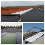Pool-Fluss-Parken-Prüfen PVC-flexibles Geomembrane