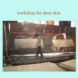 piel moldeada piel de la puerta de la puerta de la chapa HDF de 2.7m m 3m m