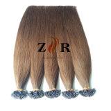 La couleur des cheveux chinois 12 Double appelée Prebonded Astuce hair extension