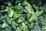 IQF gefrorener Brokkoli für den Export