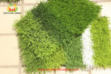конкуренция профессионала травы футбола 50mm искусственная