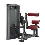 体操のローマの椅子の惑星の適性の背部拡張Xh912
