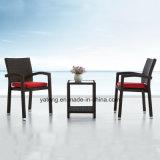 تنافسيّة خارجيّ فناء قهوة مجموعة جانبا [سثتيك] [ب-رتّن] حديقة يثبّت ([يت098]) مع قابل للتراكم كرسي تثبيت و [كفّ تبل]