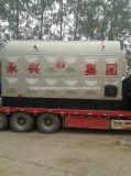 Chaudière à vapeur allumée par charbon élevé automatique d'Effiency pour l'industrie pharmaceutique