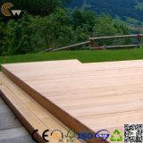 Qualitäts-Anti-UVchinapreiswerter zusammengesetzter Decking