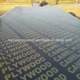 La película enfrenta la madera contrachapada con el nombre de marca en la película