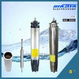 6 polegadas submersível motor com Cast Iron Head (Estilo 1)