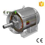 3kw 300rpm 자석 발전기, 3 단계 AC 영원한 자석 발전기, 낮은 Rpm와 바람 물 사용