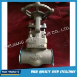 Valvola di globo forgiata dell'acciaio A105 Cl800 Nps1/2