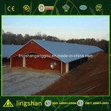 가금 닭장을%s Prefabricated 강철 헛간